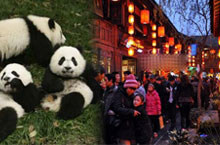 Fun Times: 5 Things You Must Do in Chengdu