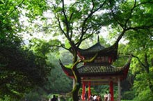 Hunting a Breeze: Changsha Summer Escapes