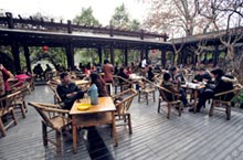 City of Cha: 3 Must-Visit Teahouses in Chengdu