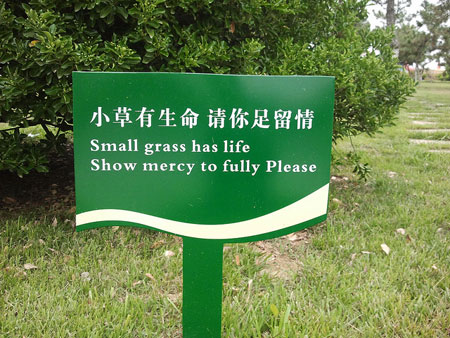 China needs a few good translators