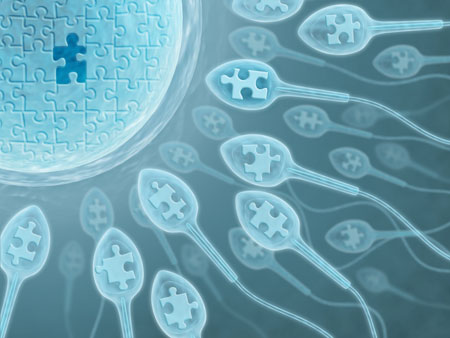 In Vitro Fertilization: A (Baby) Booming Industry in China