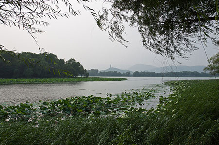 Parks in Kunming: Finding Refuge from the Urban Jungle