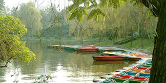 Off The Beaten Track: Chengdu's Parks